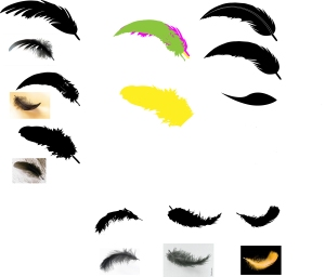 feathers.logo